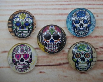 Sugar Skull Magnets, Day of the Dead Fridge Magnets, Set of 5, Kitchen Decor, Hostess Gift, Housewarming Gift, Office Decor, Locker Magnet