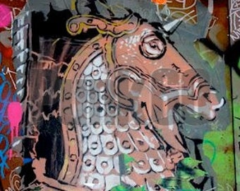 Print of Street Art Armored Horse Graffiti Photographed in Europe Fine Art Photography