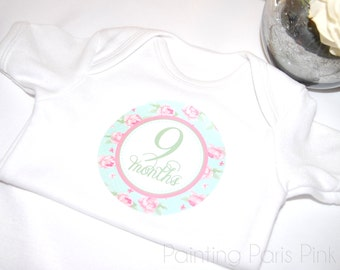 Shabby Chic Roses Belly Babe Milestone Baby Stickers | 1st Year | Bonus Just Born Set included | FREE SHIPPING