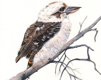 Kookaburra Print of watercolor painting 5 by 7 print, bird art, wall art, home decor, australian bird art wall art print - bird art print