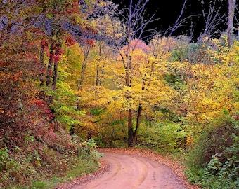 Small Wall Art 4x6 Road Less Traveled Fall Foliage Leaves Autumn Decor Photography