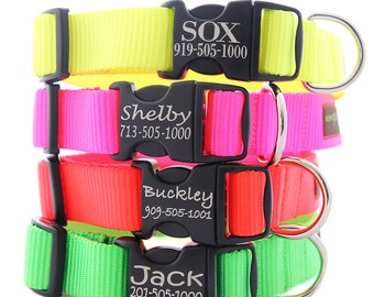 Customized Neon Dog Collar -- 4 Fluorescent Colors with info Etched on the Plastic Buckle