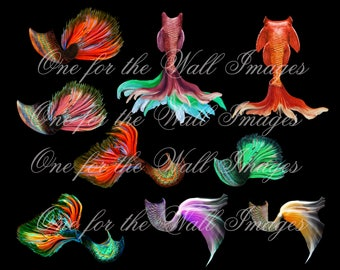 Mermaid Tail, fantasy overlay 9 tails on transparent background for use with composite art