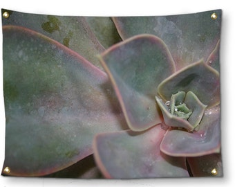 Succulent Tapestry-Southwestern Decor-Cactus Tapestry-Desert Wall Decor-Green Tapestry-Fabric Wall Hanging-Photo Tapestry-Outdoor Tapestry