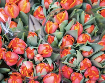 London Photography - Columbia Road Flower Market Print - Orange Tulips - Flower Photography