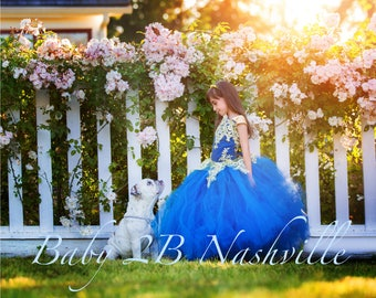 Smoke Blue Dress Gold Dress Flower Girl Dress Princess Dress Tulle Dress Lace Dress Wedding Dress Toddler Dress Tutu Dress Girl Dress