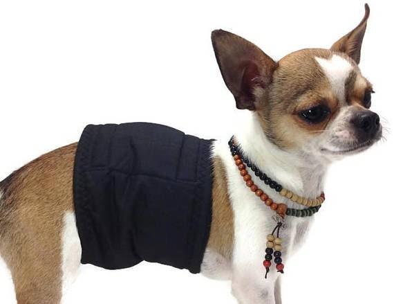 Le chien du ventre bandes - Golden Golden - Retriever - Pack 4 - en vrac - groupe un chien Galerie - lavable - imperméable à l'eau b93efb