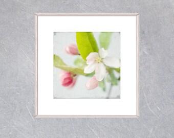 Digital Apple Blossom Print,  Printable Nursery Decor, Digital Download, Floral Wall Art,  Flower Poster, Large Flower Art, Bedroom Decor