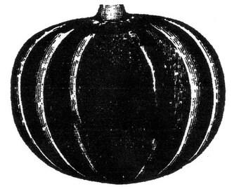 rustic pumpkin-LARGE-Red Rubber Stamp-Original design 01110, halloween stamp, fall stamp, thanksgiving rubber stamp, pumpkin rubber stamp