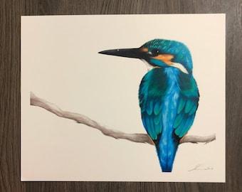 "Kingfisher, 8.5""x11"" PRINT - ""Patience"""