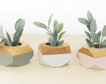 Mothers Day Gift Geometric Wooden Mini Planters set of 3, for succulents, Desk and Home Decor, blush