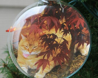 Personalized Ornaments - Photo Ornaments - Family Photo Gift - Keepsake Gift - Stocking stuffer - 3 & 1/8 Inch Glass Disc