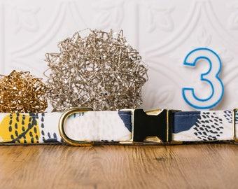 Colourful Dog Collar, Paint Splatter, Anstract, Fun Dog Collar, Male Dog Collar, Blue, Yellow, Gold Metal Buckle