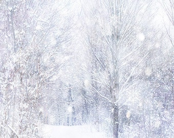 Winter Landscape Photography, New England Art Print, Snowflakes, Abstract Snow Photograph, 8 x 10 Print, White Winter Decor