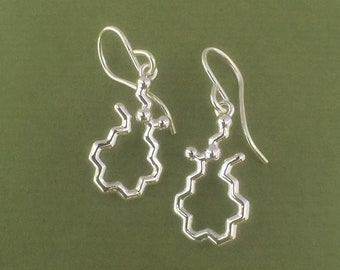 anandamide bliss molecule earrings in sterling silver