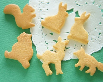 6 pcs Animal Cookie Cabochon (15mm- 27mm) CD684 (((LAST/No restock)))