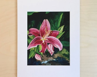 Pink Lilly art print