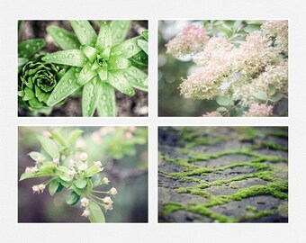Spring Nature Prints or Canvas Art, Green and Pink Nature Prints Set of 4, Floral, Moss, Raindrops, Woodland, Nature Prints Set, Pastel.