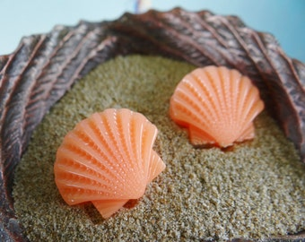 Little Apricot Clamshell Earrings Earring Studs Stud Nautical Shell Seashell Clam Beach I'm Really A Mermaid Pinup Pin up Rockabilly Im