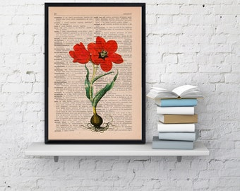Wall art Vintage Book Print Illustration Tulip botanical studio print on Vintage Dictionary Book art BFL059
