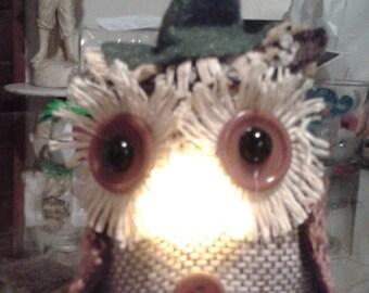 Mr Light up Wise Owl
