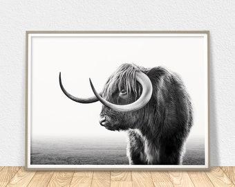 Highland Cow Print - Black And White Art, Highland Bull, Hairy Cow Print, Cow Horn Poster, Scottish Cow Art, Printable Wall Art, Boho Decor