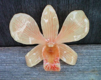 Free Shipping REAL Natural Peach Orange ORCHID in Poly Resin Pin and Pendant