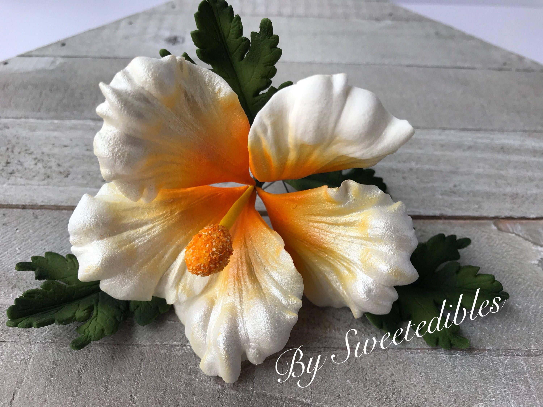 Gum paste hawaiian hibiscus flower cake decorations white fondant flower izmirmasajfo Gallery