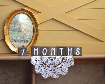 Baby Month Milestone Alphabet ABC Blocks Baby Nursery Wood Wooden Toy Baby Monthly Picture Photo Prop Sign - the Urban Baby