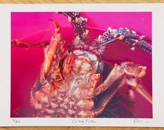 Limited edition Crayfish colour photograph