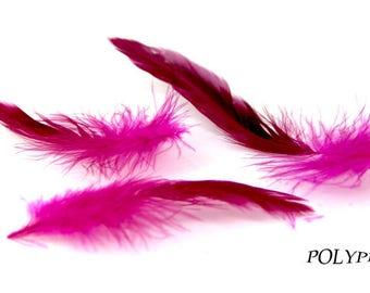 10 feathers fuschia, jewelry, custom earrings