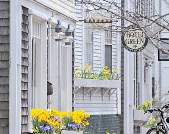 Nantucket Art, Large Art, Cottage Decor, Vertical, Fine Art Photography, Kitchen Art, Home Decor, Daffodil Flowers, Springtime, Yellow Decor