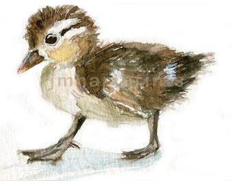 Watercolor  Baby Duck, Baby Duck Print