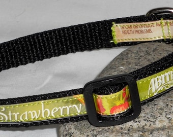 Adjustable Cat or Toy Dog Collar from recycled Abita Strawberry Harvest Lager Beer Labels