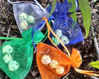 Party Favor Seed Bombs Native Wildflowers *Grow Flowers Anywhere!*