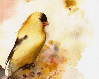 A Short Rest - Bird Art