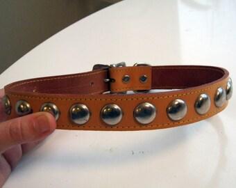 vintage unused caramel leather dog collar with chrome studs size 24