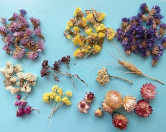 Craft supply for Epoxy Resin, Dried mini flowers for resin jewelry, glass, orb-glass vial filter, set of mix flowers for craft 8 gr