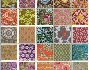 Amy Butler Fabric GRAB BAG SPECIAL 10 Fat Quarters all different designs