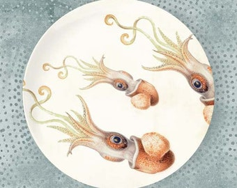 Squid no. 3 bobtail plate
