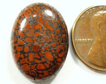AGATIZED DINO BONE, Dinosaur Bone 21 x 15 mm oval cabochon, 16.23 carats dino bone fossil gem, stone for mans ring, Utah