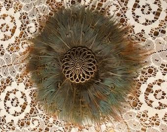 Pheasant Feather Hair Clip