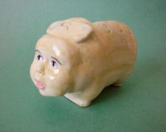 Little pig boy
