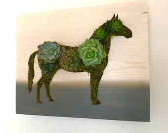 Horse Succulent and Cacti Vertical Garden | Vertical Planter | Living Wall | Wall Planter