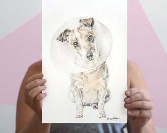 UP TO 40% OFF - Jack Russell Terrier Giclee Art Print | Cone of Shame