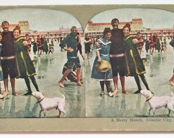 Stereo View Card A Merry Bunch Atlantic City Rare Antique Stereograph Card Vintage Bathing Beauties Dog Atlantic Beach Stereoview Card