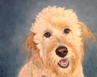 8 x 10 impression jet d'encre Labradoodle chien animal art par RSalcedo FFAW livraison gratuite