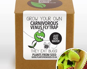 Grow Your Own Venus Fly Trap Plant Kit
