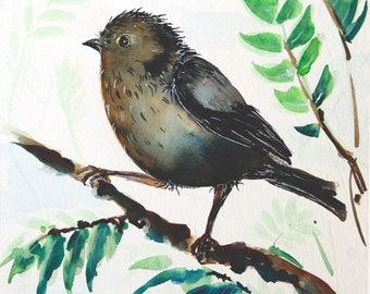 ORIGINAL painting Sparrow painting Original watercolor painting Bird artwork bedroom wall art bird art 8 x 10 painting original art