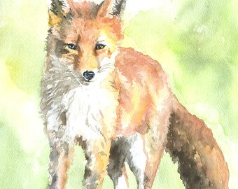 Red Fox Watercolor Painting Fine Art Print 8 x 10 - Giclee Reproduction 8.5x11